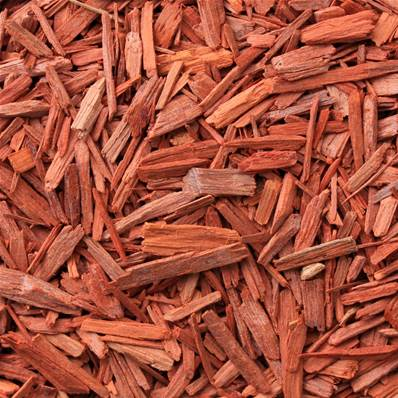 Red Sandalwood Extraction Cut 1cm