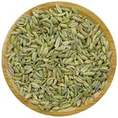 Organic Sweet Fennel Fruit Whole