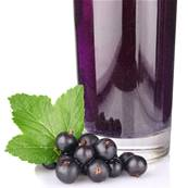 Blackcurrant Fruit Juice Concentrate