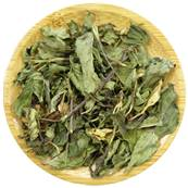 Peppermint Leaf Loose Tea Cut 4-10mm