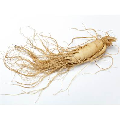 White Ginseng Root Powder 300µm Heat Treated